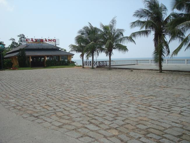 Thưởng thức hải sản tại quán Cây Bàng