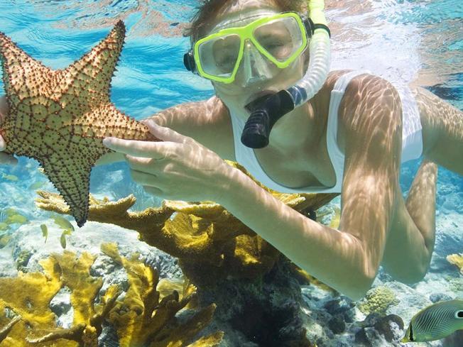 Ngắm san hô trên biển Mỹ Khê