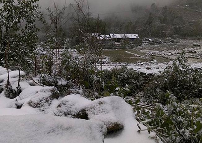 Cận cảnh những hình ảnh tuyết rơi trắng xóa tại Sapa