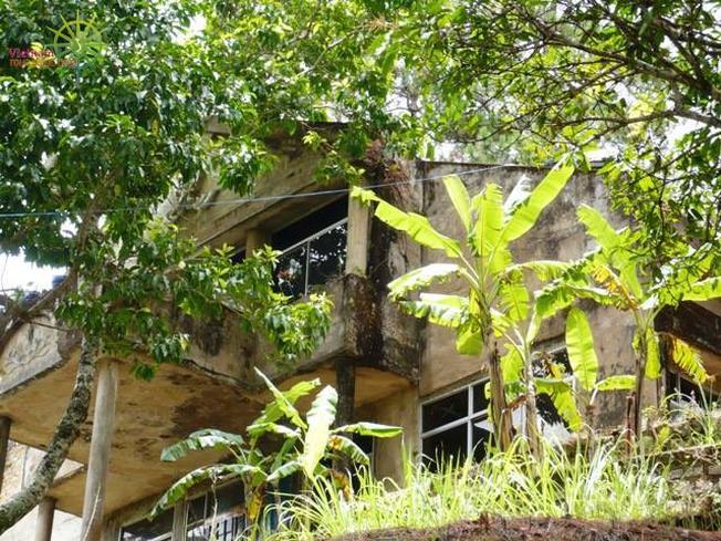 Biệt thự cổ trên đèo Prenn ở Đà Lạt