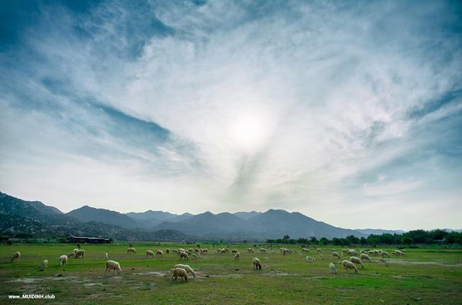 Khu du lịch Tanyoli nơi trải nghiệm thể thao mạo hiểm tại Ninh Thuận
