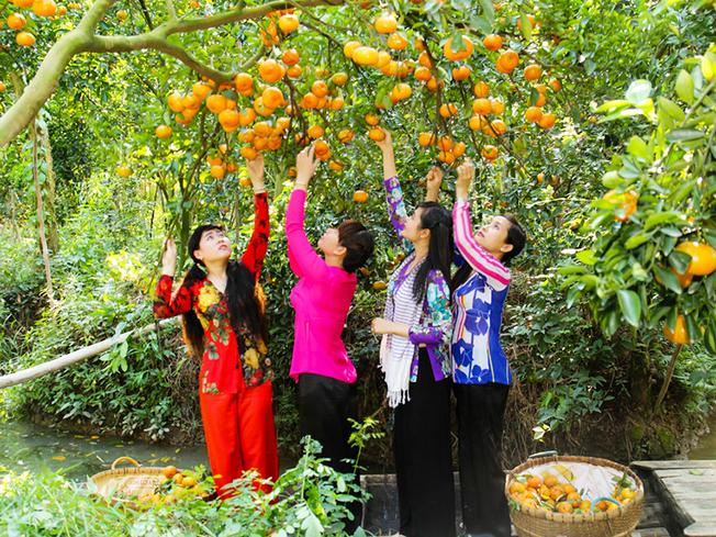 Chùm ảnh khám phá miệt vườn thưởng thức trái cây miền Tây Nam Bộ