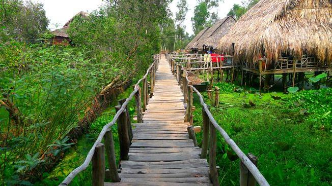 Khu du lịch Gáo Giồng Đồng Tháp nơi hòa mình với thiên nhiên