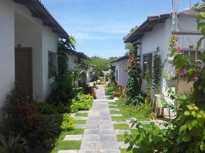 Xung quanh nhà nghỉ được bao bọc bởi cây xanh